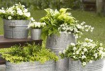 Trädgård & Pallar