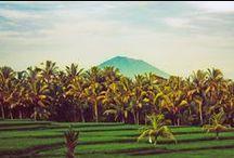 Bali Bohemian House