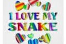Snakes / Snakes from around the world / by Nikki