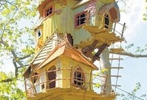 Extraordinary Tree Houses