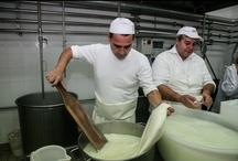 Mozzarella tour in Italy / We made a pit stop to make Mozzarella cheese