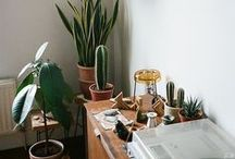 decor / creating spaces