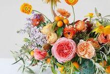 FLOWERS / L'Amour des Fleurs