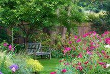 Tuinen / Inspiratie voor onze fantastische nieuwe tuin