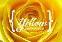 {YELLOW} / ALL SHADES OF YELLOW! COMMENT TO JOIN ❤ INVITE YOUR FRIENDS ❤