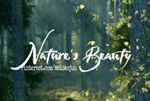 NATURE'S BEAUTY / NATURE.. COMMENT TO JOIN ❤ INVITE YOUR FRIENDS ❤