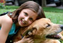 Pet Care for Kids / Find some absolutely fantastic pet care for kids tips and tricks here that your children and families will love!