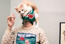 · Cat Party ·