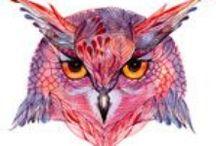 Sowy/ Owls