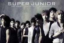 Super Junior / South Korean male idol group; formed: 2005; S.M. Entertainment; members: Leeteuk, Heechul, Hankyung, Yesung, Kangin, Shindong, Sungmin, Eunhyuk, Donghae, Siwon, Ryeowook, Kibum, Kyuhyun