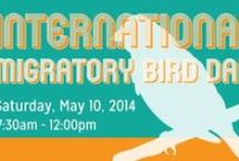 Bird Day (IMBD)/Día Internacional de las Aves Migratorias Events / With over 600 registered International Migratory Bird Day Events, Here are just a few of the great activities happening during the 2014 IMBD/DIAM across the U.S., Canada, the Caribbean, Latin and South America.