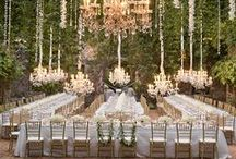 Centerpieces & Table Decor / Centerpieces & table decor for your wedding