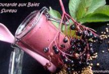Un sureau dans mon jardin - An elderberry in my garden / l'univers des sureaux