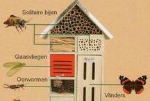 Nichoirs à insectes - insects hotel - Insektenhotel / pour avoir des abeilles solitaires et autres insectes au jardin