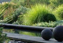 L'eau au jardin - Water in the garden - Bassins - Basins  / L'eau contenue