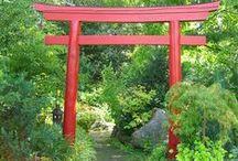 Garden separation ideas - Torii Gate - 鳥居 -  portail traditionnel japonais / Torii signifie littéralement « là où sont les oiseaux » : Du fait de sa fonction de séparation symbolique du monde physique et du monde spirituel, chaque torii traversé lors de l'accès à un sanctuaire doit être retraversé dans l'autre sens afin de revenir dans le monde réel. Il n'est pas rare de voir des Japonais contourner un torii lorsqu'ils pensent ne pas repasser plus tard par cet endroit.