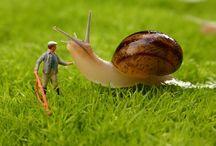 Miniature people / by Inge Hoogendoorn