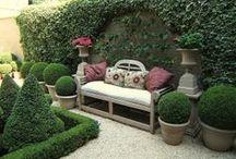 I'm... in the garden! / Ook al hebben we maar een klein stadstuintje, genoeg wensen!