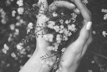 flowerish / For flower gazing