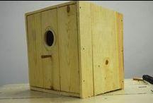 MAKING THINGS / BIRD HOUSE