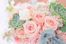 Wedding Inspiration  / by Alicia Kemmerling