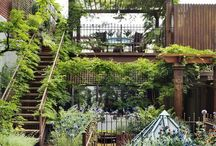 home / eccentric, inspiring places to call home / by sophia