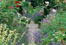 Beautiful Gardens / All about beautiful gardens, gardening and all the wonderful things a garden can provide ♥