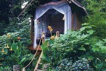 Imaginary Tree House