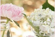 Wedding / by Ashley Brooke