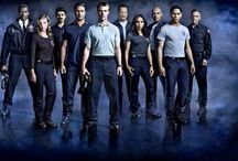 Chicago Fire & PD