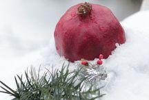Christmas , evocative and original ideas