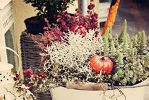 Autumn decor - Herbst Deko