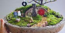 Fairy & Dish Gardens