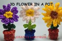 Rainbow loom patterns / by Cayley Cross
