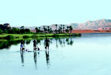 Outdoor Adventures / Outdoor activities to enjoy both at our resort and around Lake Las Vegas.