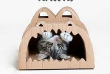 P E T S / Functional, design oriented accessories for your pets that won't sacrifice the style in your space.