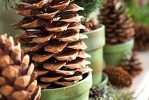Winter Decorations/Ideas