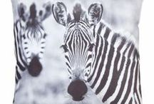 zebraprint / zebra print