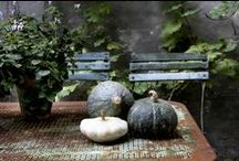 Vegetable & Edible Gardens ~ Inspiration & Design Ideas / Ideas, tips & inspiration for edible gardens / by HEDGE Garden Design & Nursery