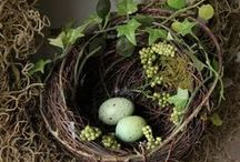 Spring & Easter【巣/Nest and  treat】