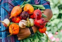 Organic Farmstead Garden / We have our very own garden at Smith Fork Ranch. Guests can help harvest vegetables or pick a lovely flower bouquet. Or just enjoy the fresh, tasty bounty that comes from our backyard! http://bit.ly/OrganicFarmstead
