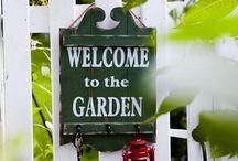 Garden Flowers Terrace / by Moira Cutini