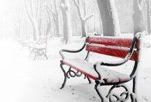 winter / winter theme