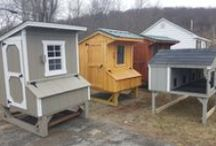 Chicken Coops / Best in Backyards of Connecticut and New York now sells beautiful backyard chicken coops. As with all of our products, we offer professional delivery and installation.
