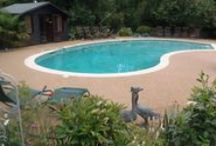 Swimming Pools / Our favourite swimming pool projects