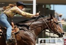 western - ranch -charro - quarter horses-cowboy - cowgirl - rodeo  / by Lucka Royal