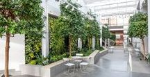 Inspire - Natural office design / Nature as a source of inspiration. This board is meant as an inspiring board how to bring nature indoors and how to soften interior design.