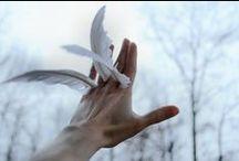 x men; warren worthington III / i bet I'm the first angel who had to break into heaven!