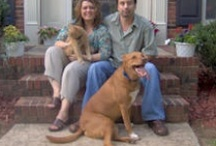 About Us / Walkin'-n-Waggin' Dog Walking and Pet Sitting Service began providing pet care services to Charlotte area pet owners in 2004. Since that time, Lori & Don Waldo,  along with their team of professional dog walkers / pet sitters, have been striving to provide the most reliable, yet affordable, high-quality dog walking / pet sitting services to each client throughout the Charlotte region, including Ballantyne, Lake Norman, Huntersville, Cornelius, Davidson, Harrisburg, Concord and Matthews.