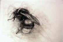 Yo <3 abejas